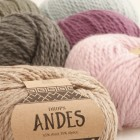 Andes main new