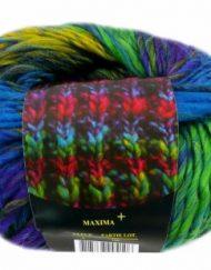 maxima-plus-4